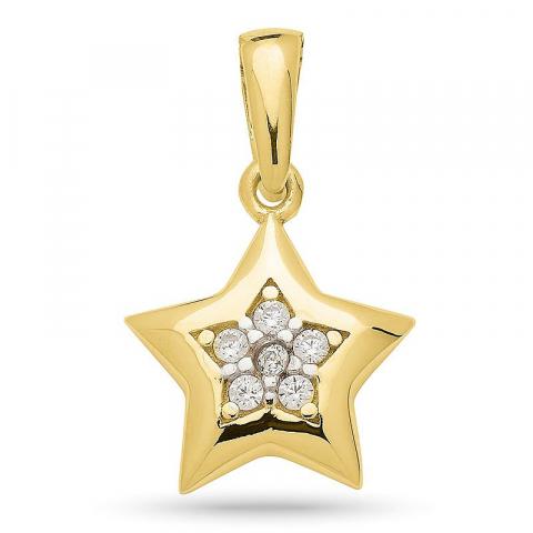 Eleganter Stern Zirkon Anhänger aus vergoldetes silber mit rhodinierung